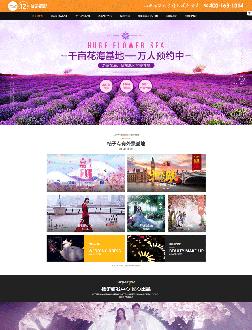 婚纱摄影类网站建设案例效果欣赏